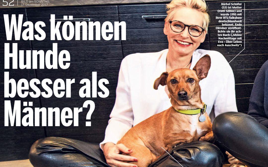 Was können Hunde besser als Männer?
